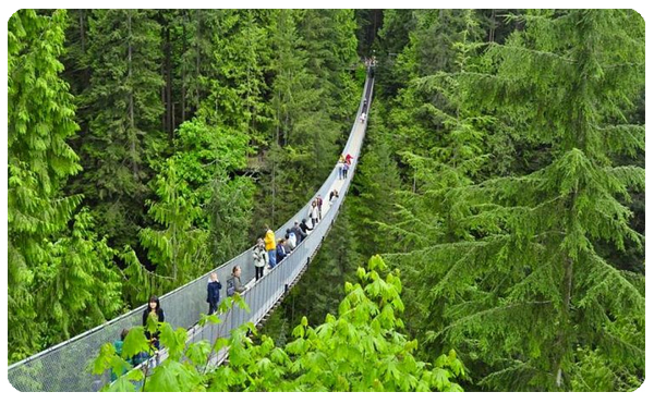 Capilano Suspension Bridge (W)