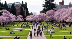University of Washington (UW), USA